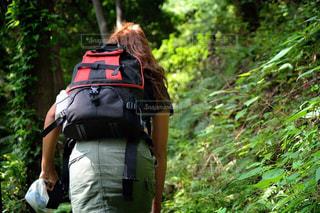 森林の隣に立っている男の写真・画像素材[779840]