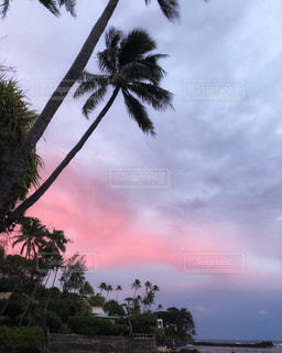 ハワイの夕暮れの写真・画像素材[2417600]