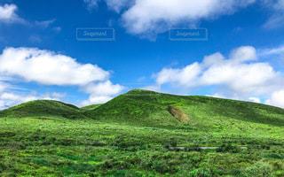 ハワイ島をドライブしてたときの風景の写真・画像素材[3339307]