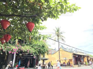ベトナム旅行 - No.775647