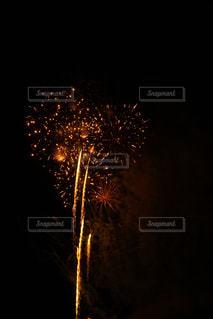夜空の花火の写真・画像素材[1310626]