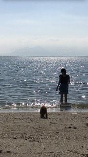 水の体の横に立っている人の写真・画像素材[799437]