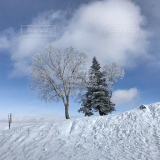 雪をスノーボードに乗る男覆われた斜面の写真・画像素材[958504]