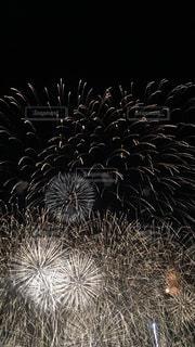空に花火のグループの写真・画像素材[1312314]