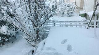 雪の平面図に地面が覆われています。の写真・画像素材[1027132]
