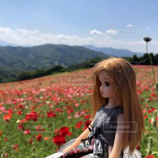 日本の絶景,ポピー畑,埼玉県,リカちゃん,天空のポピー,東秩父村,青空が好き,梅雨を吹き飛ばそう
