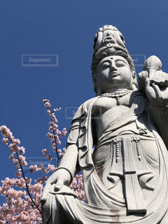 空,桜,屋外,満開,人,像,寺,さくら,観音様