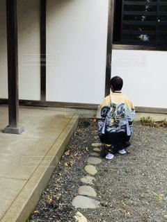 七五三 - No.831783