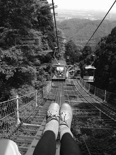 背景の木と電車の中で男を追跡します。の写真・画像素材[813206]