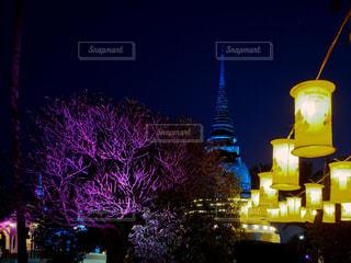 ライトアップされた仏塔の写真・画像素材[797528]