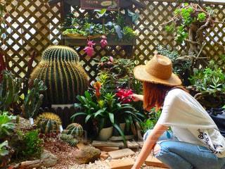 庭に座っている女性 - No.786711