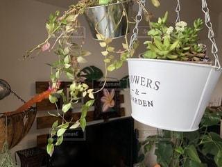 テーブルの上の花の花瓶の写真・画像素材[1023405]