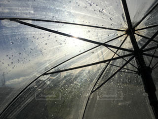 自然,空,傘,屋外,水面,光,外,rain,あめ,梅雨,ビニール傘,雨の日,かさ