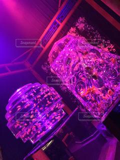 近くに紫のステージ アップの写真・画像素材[843513]