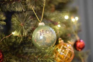 クリスマスツリーの写真・画像素材[921762]