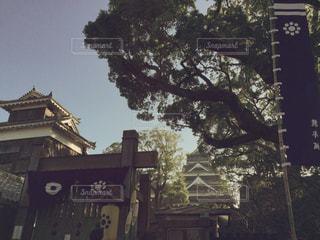 空,夕焼け,夕暮れ,城,旅行,熊本城