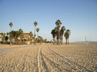 ビーチ,アメリカ,サンタモニカ,カリフォルニア,ロスアンジェルス