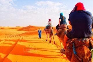 サハラ砂漠でキャメルライドの写真・画像素材[3407009]