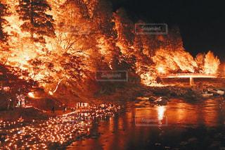 夜の街の景色の写真・画像素材[875101]