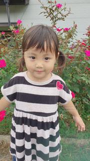 草の中に立っている少女の写真・画像素材[857202]