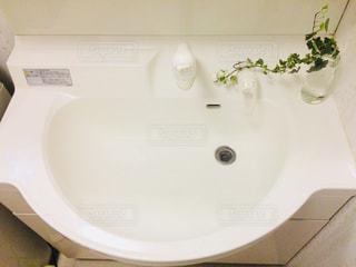白,室内,癒し,シンプル,朝,植物のある暮らし,グリーン,洗面所,洗面台,清潔,緑のある暮らし