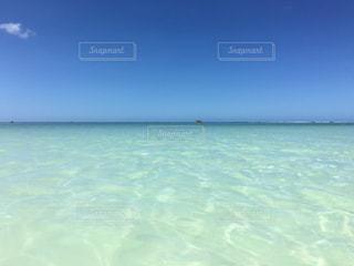 グアムの透き通る海の写真・画像素材[797535]