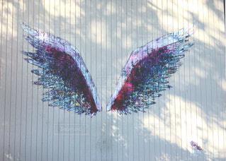 インスタの為のてんしの羽の写真・画像素材[817040]