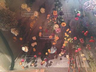 インスタ映えなドライフラワーの天井の写真・画像素材[817180]