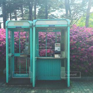 レトロかわいい公衆電話の写真・画像素材[817203]
