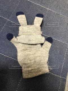手袋うさぎの写真・画像素材[1796712]