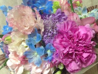 サプライズのお花の写真・画像素材[3084503]