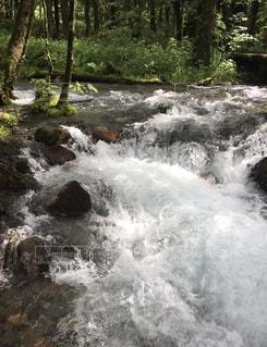 川のせせらぎに耳を傾けの写真・画像素材[798823]