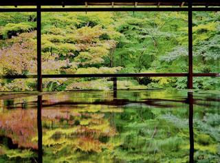 まるで日本のウユニ塩湖の写真・画像素材[814992]