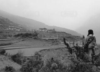 ブータンの棚田に黄昏の写真・画像素材[818573]