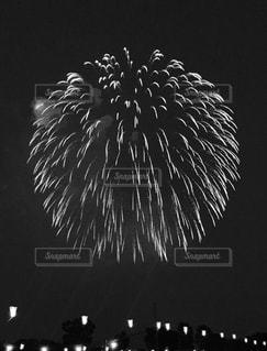 あの日見た花火の写真・画像素材[830638]