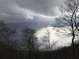 自然,秋,紅葉,湖,枯れ葉,落ち葉,十和田湖,11月,キレイ