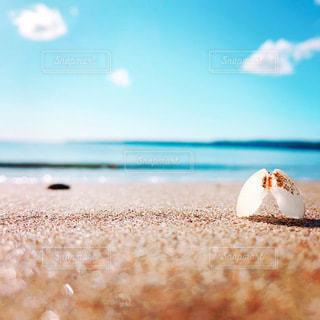 砂浜の写真・画像素材[3545781]