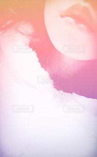 クローズ アップ ホワイト バック グラウンドのの写真・画像素材[886576]