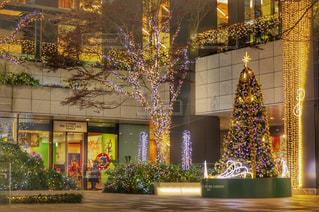 クリスマスツリーの写真・画像素材[931074]