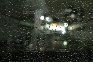 雨の写真・画像素材[808020]