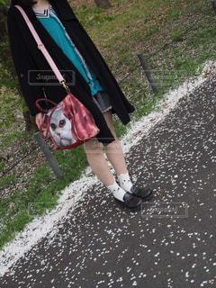凧を保持している小さな女の子の写真・画像素材[896943]
