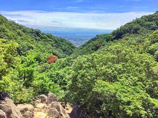 背景の山と木の写真・画像素材[799903]