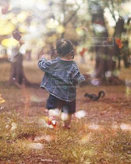 草の中に立っている小さな女の子 - No.914257