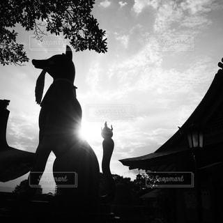 日没の前に立っている女性の写真・画像素材[819251]