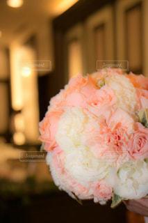 近くの花のアップ - No.820624