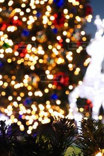 夜,カラフル,鮮やか,光,イルミネーション,ライトアップ,キラキラ,クリスマス,ツリー,装飾,クリスマスツリー,トナカイ,多色
