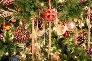 カラフル,鮮やか,光,イルミネーション,ライトアップ,キラキラ,クリスマス,ツリー,装飾,クリスマスツリー,多色
