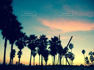ビーチ,アメリカ,旅行,カリフォルニア,CA,Venice beach,broad walk