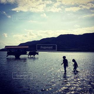 水牛車と兄弟の写真・画像素材[818226]