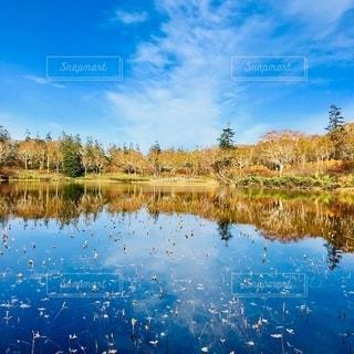自然の写真・画像素材[2647066]